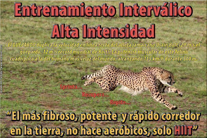 HIIT-Entrenador-Personal-Madrid-Josemi-del-Castillo