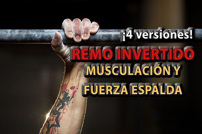REMO-invertido-musculacion-espalda-entrenamiento-personal